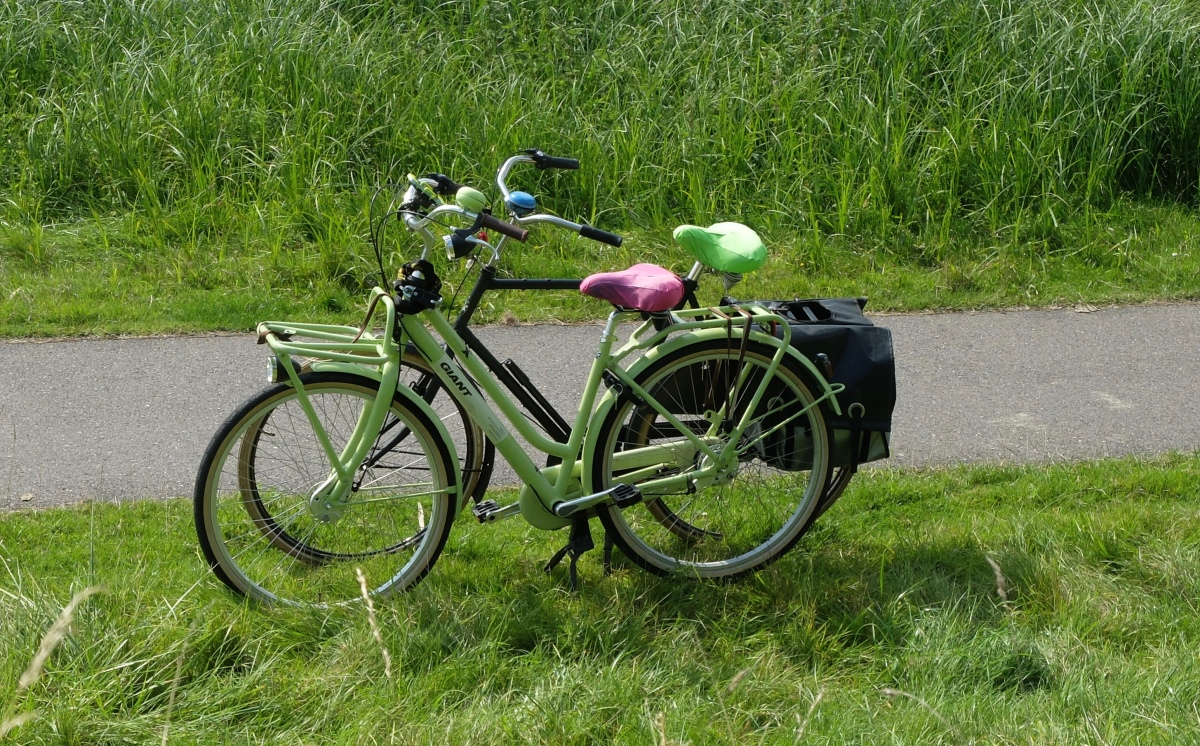 Bike adventures in Amsterdam; Muiden & Weesp