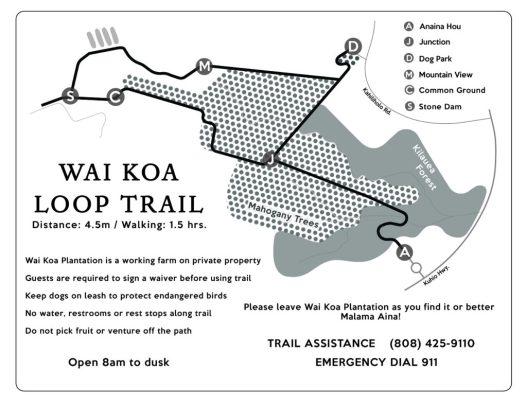 Wai-Koa-BW_1-1024x791
