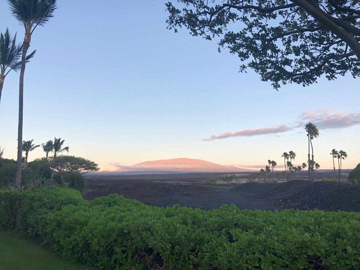 Hunkering down in Hawaii (part 2)..lockdown inParadise